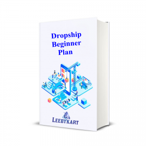 Dropship Beginner Plan